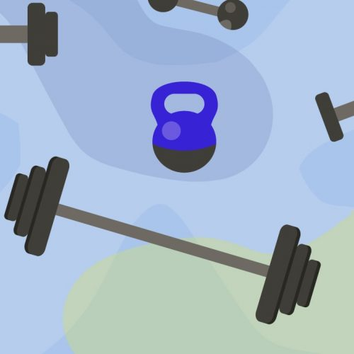 Types Of Weight Training Equipment – Know The Types